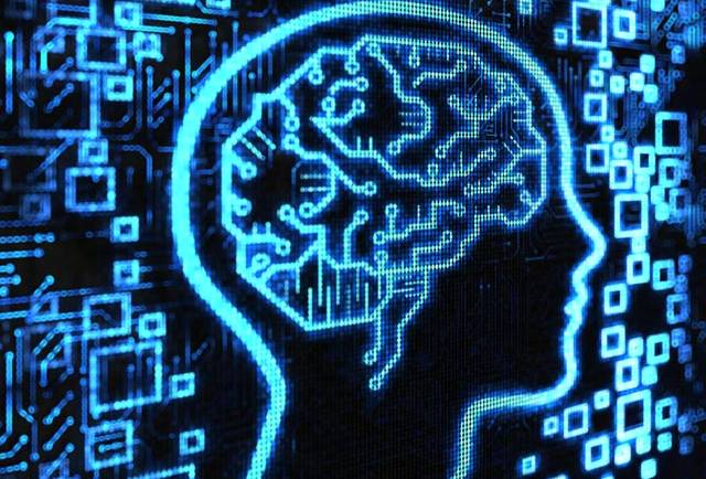 Three Principles - brain